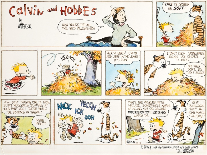 calvin-and-hobbes